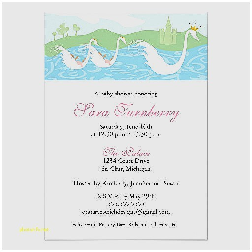 a new little princess baby shower invitations