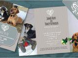 Dog Wedding Invitations Dogs Pet Wedding Invitation Invites I Designed