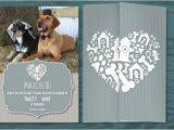 Dog Wedding Invitations where Can I Buy Synthroid Online Buy Here Gt Gt Excellent