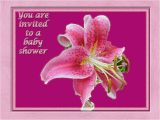 Lily Baby Shower Invitations Baby Shower Invitation Pink Stargazer Lily Graph by