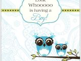 Owl Baby Shower Invitations for Boy Funky Owl Boy Baby Shower Invitations
