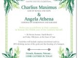 Toga Party Invitations Wording toga Party Birthday Invitations Invitations themed