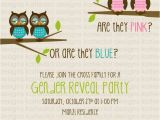 Twin Gender Reveal Party Invitations Twins Gender Reveal Invitation Owl Baby Katiedid Designs